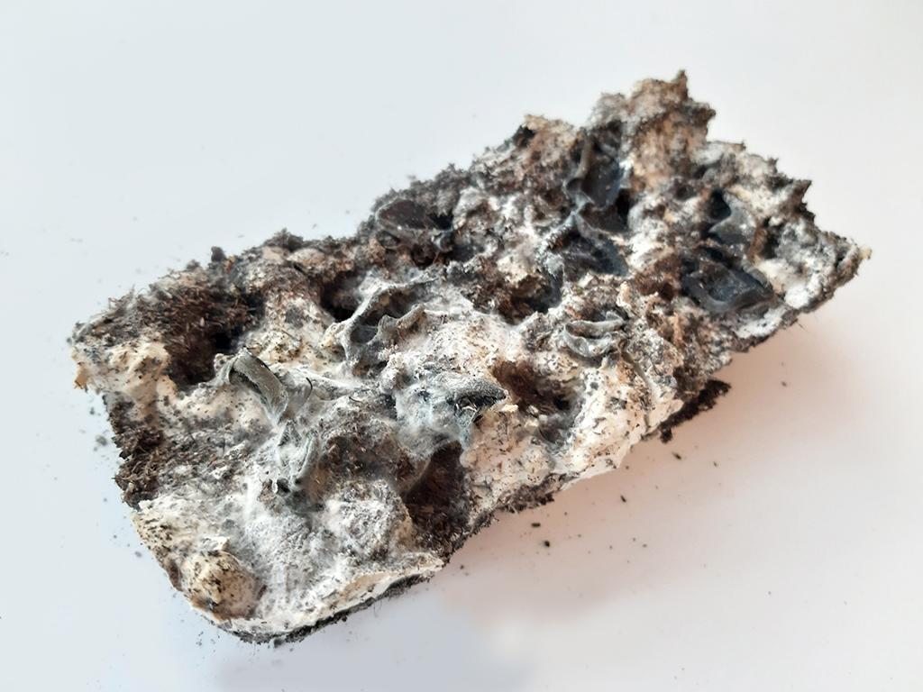 микокарст самовосстанавливающиеся материалы город архитектура грибы