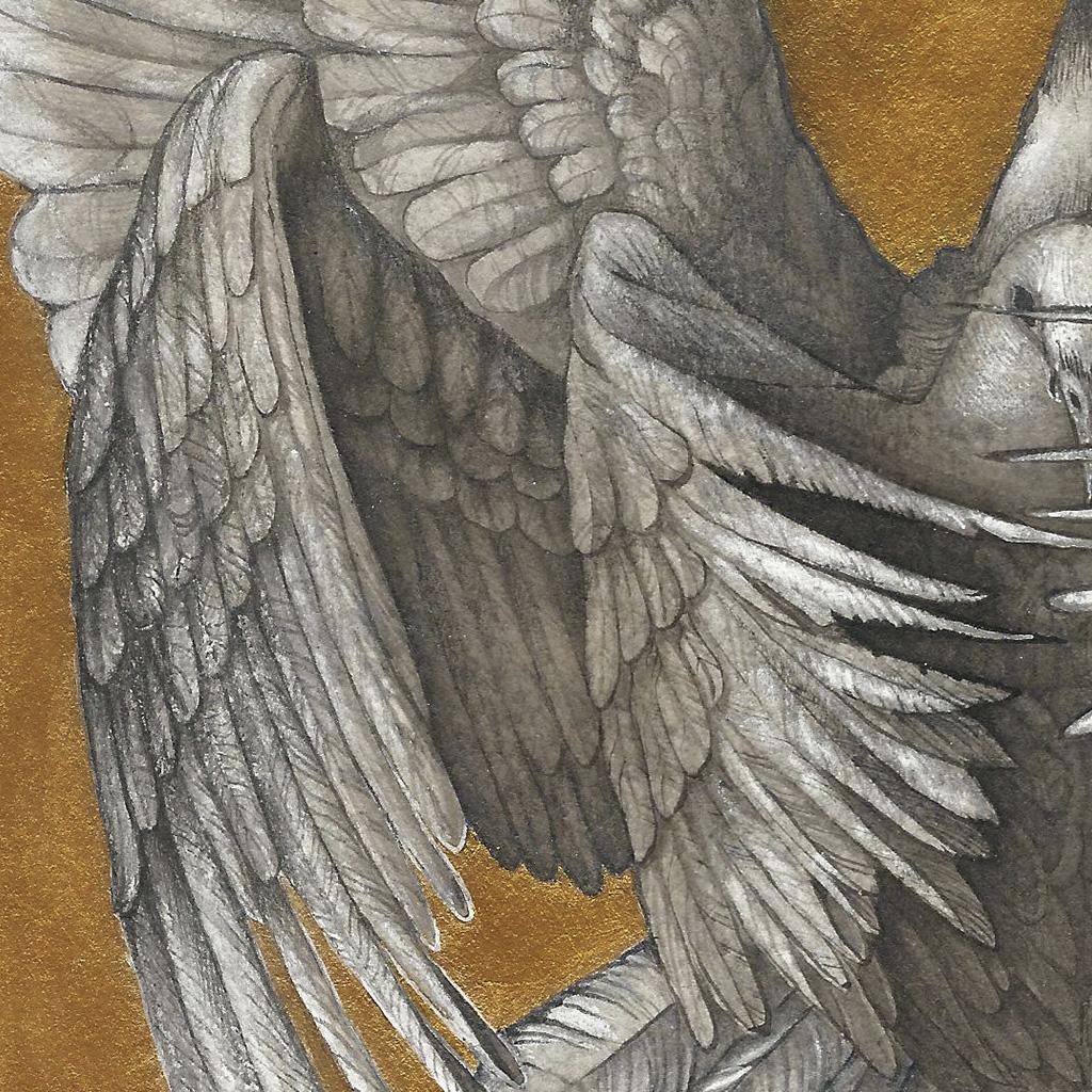 Золотая птица - д1